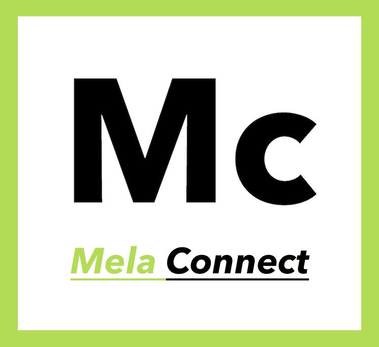 Agenzia Web Marketing MC Asti Mela Connect.png